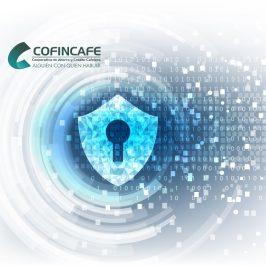 Política de privacidad y tratamiento de datos personales COFINCAFE